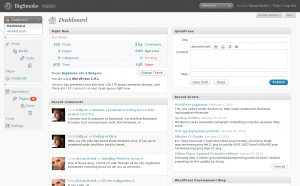 WordPress dashboard with borked menu