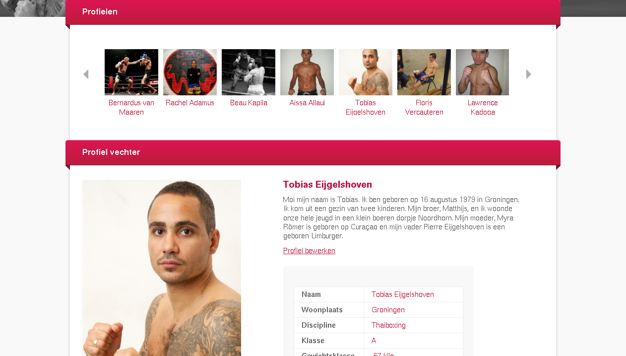 BigSmoke » Ytec, WordPress and Aihato.nl