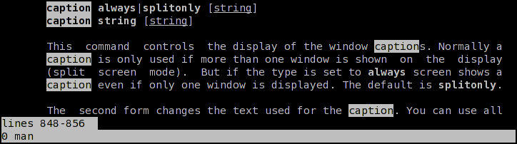 GNU Sreen with default window captions (in XTerm)